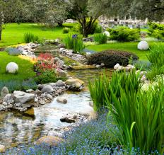 Water features, such as ponds, can be incorporated in custom landscape designs.