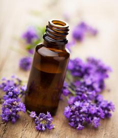 Lavender oil can treat burns, while lavandin oil can't.