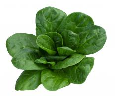 Eating dark green, leafy vegetables is a good way to boost calcium intake.