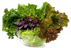 Leafy green vegetables contain significant amounts of folate.