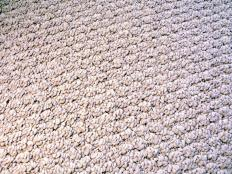 Berber is a popular example of loop pile carpet.