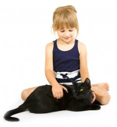 The concept of a black cat is an example of fast mapping.