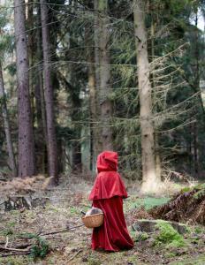 "The Big Bad Wolf is the antagonist in ""Little Red Riding Hood."""