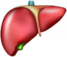 Fatty liver disease occurs when the organ's function is compromised.