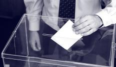 Cumulative voting allows shareholders to cast all the votes at their disposal for a single candidate.
