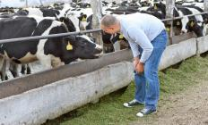 Ethologists may study the effects of pharmaceuticals on livestock.