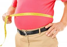 Guggulsterones have been used as a weight loss treatment.