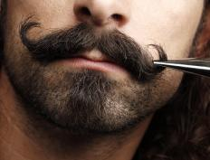 Proper grooming techniques should be learned before entering a mustache competition.