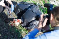Forensic photographers gather visual, or phtographic, evidence at crime scenes.