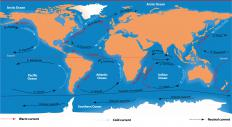 Marine Science includes the study of ocean currents.