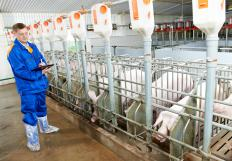 The USDA uses inspections to monitor how food is produced.