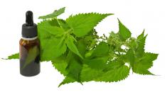 Nettle leaf extract offers numerous health benefits.