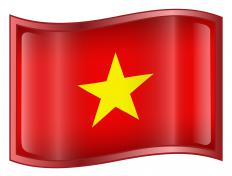 North Vietnamese troops launched the Tet Offensive.