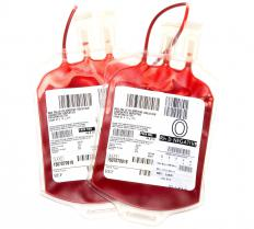 Two packs of O- blood, which can be transfused to anyone.