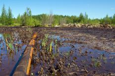 Companies may be fined by a local or national government for contaminating land or water with oil.