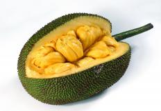 Jackfruit is similar in taste to a split-leaf philodendron's fruit.