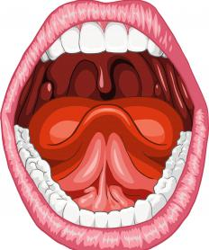 A human mouth with the frenum shown as a pink vertical line connecting the tongue to the mouth.