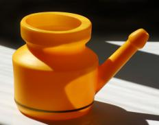A neti pot can be used to pour a warm saline solution inside one of the nostrils.