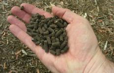 Organic fertilizer pellets.
