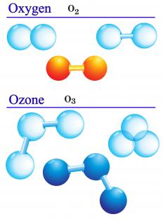 Atmospheric chlorine derived from chlorofluorocarbons (CFCs) converts ozone to oxygen molecules.