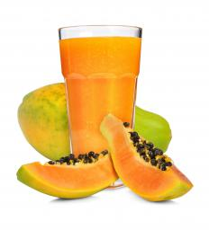 The papaya is often called a tree melon.