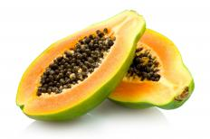 Protein-digesting enzymes include cysteine proteases, found in fruit like papaya.