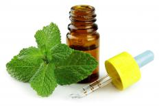 Peppermint is added to lotions to ease muscle pain and soreness.