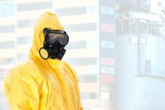 Safety consultants check for biological hazards in a workplace.