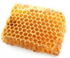 Piece of a honeycomb.