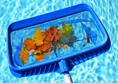 Manual pool skimmers can easily pickup debris floating on the surface of the pool.