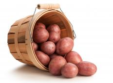 Red potatoes are usually mashed with the skins on.