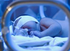 While in a NICU, babies are kept in enclosed incubators with heating pads.