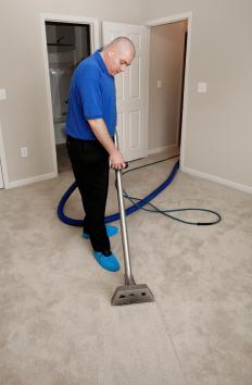A person sanitizing a carpet.