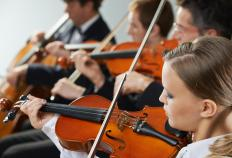Violin tutors may work for violin training academies.