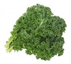 Kale is very high in beta carotene.