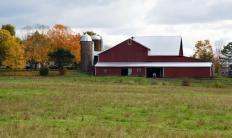 Barn houses are typically houses made to look like barns or that used to be barns.
