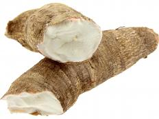 One type of gari is made from cassava.