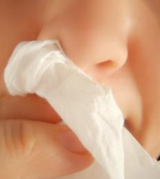 Flunisolide may be used to treat a runny nose.