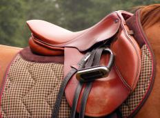 An ergonomic saddle evenly distributes the weight of a rider on a horse's back.