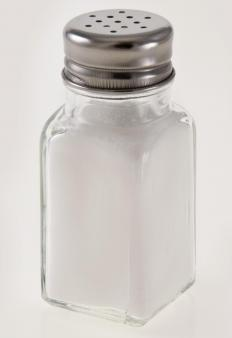 "A salt shaker, the inspiration for the term ""to take something with a grain of salt.""."