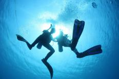 Scuba diving is popular among fitness vacationers because it allows them to explore an unfamiliar world.