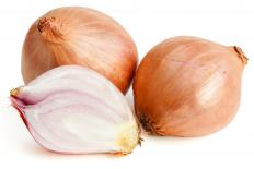 Normandy sauce often includes shallots.