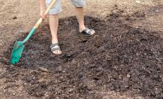If a garden develops mulch fungus, some people will remove the affected portion and replace it with a new layer of mulch.