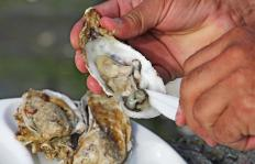 Frequently, shellfish is purchased alive so it is sure to be fresh.