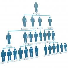 An organizational chart of a company's corporate hierarchy.