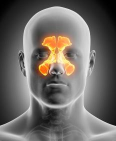 Sinus cancer affects the nasal cavities.