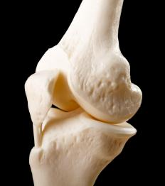 The knee joint is a type of synovial joint.