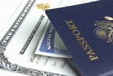 Diplomatic passports are usually issued to government employees.