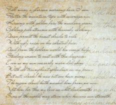 The sonnet was a type of poem developed during the Renaissance.