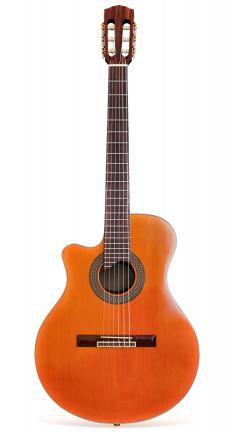 An acoustic guitar.